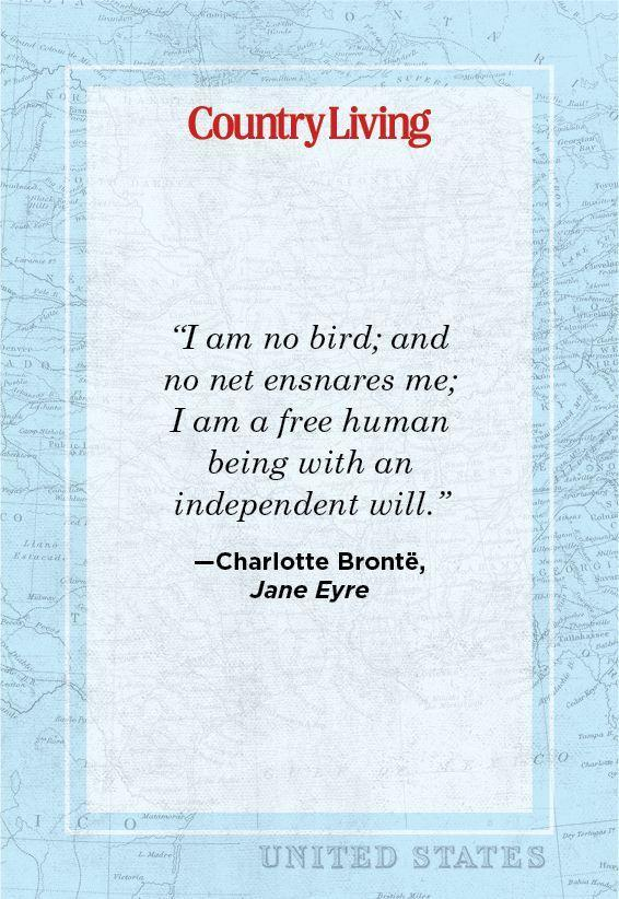 """<p>""""I am no bird; and no net ensnares me; I am a free human being with an independent will.""""</p>"""