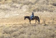 "<p>This one makes total sense: It's illegal to drink before riding a horse in Colorado. It's considered a <a href=""https://www.9news.com/article/life/style/colorado-guide/9-weird-colorado-laws-that-are-still-on-the-books/73-d2c15c73-bc96-4a5b-b28d-45248c816d75"" rel=""nofollow noopener"" target=""_blank"" data-ylk=""slk:non-motorized vehicle"" class=""link rapid-noclick-resp"">non-motorized vehicle</a>.</p>"