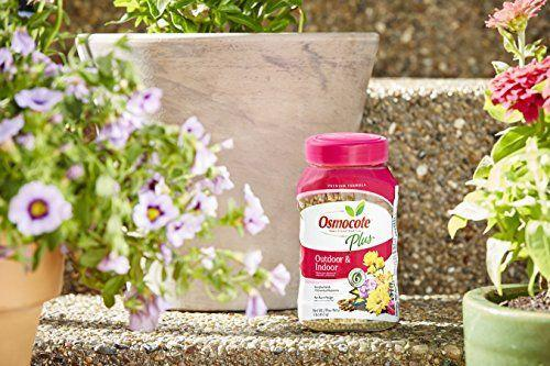 """<p><strong>Osmocote</strong></p><p>amazon.com</p><p><strong>$7.59</strong></p><p><a href=""""https://www.amazon.com/dp/B0071CZTBA?tag=syn-yahoo-20&ascsubtag=%5Bartid%7C10057.g.35967068%5Bsrc%7Cyahoo-us"""" rel=""""nofollow noopener"""" target=""""_blank"""" data-ylk=""""slk:BUY NOW"""" class=""""link rapid-noclick-resp"""">BUY NOW</a></p><p>Mix these slow-release fertilizer granules into the soil around plants, and you won't have to feed again for up to six months. It's fine for both indoor and outdoor plants. </p>"""