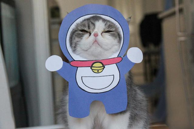 """<p>Snoopy looking most impressed with his RobotiCat outfit from the Japanese manga series, Doraemon. """"It is really hard to pick a favorite outfit as they're all so amazing."""" (Photo: DailySnoopy/Caters News) </p>"""