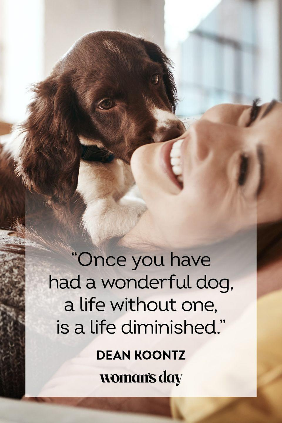"""<p>""""Once you have had a wonderful dog, a life without one, is a life diminished.""""</p>"""