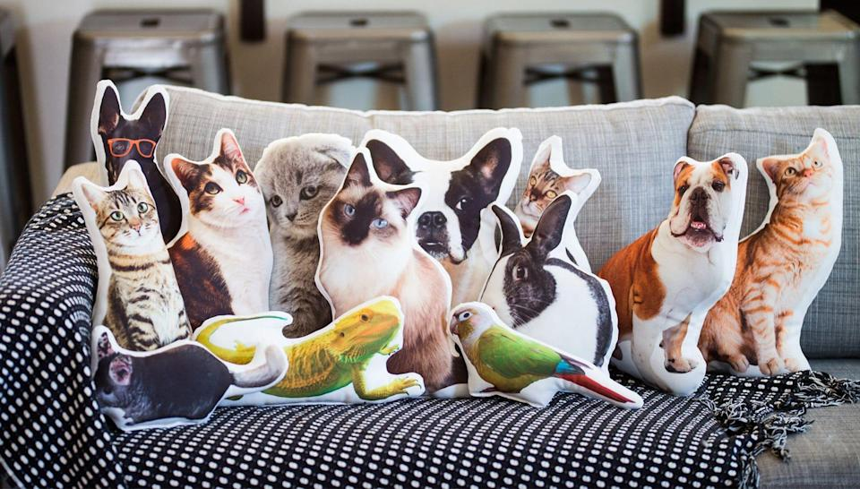 Gifts for college-bound students: aurespaces custom pet pillow