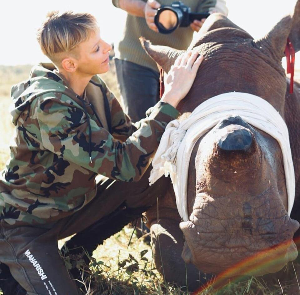 Princess Charlene of Monaco's recent trip to South Africa included essential rhino conservation