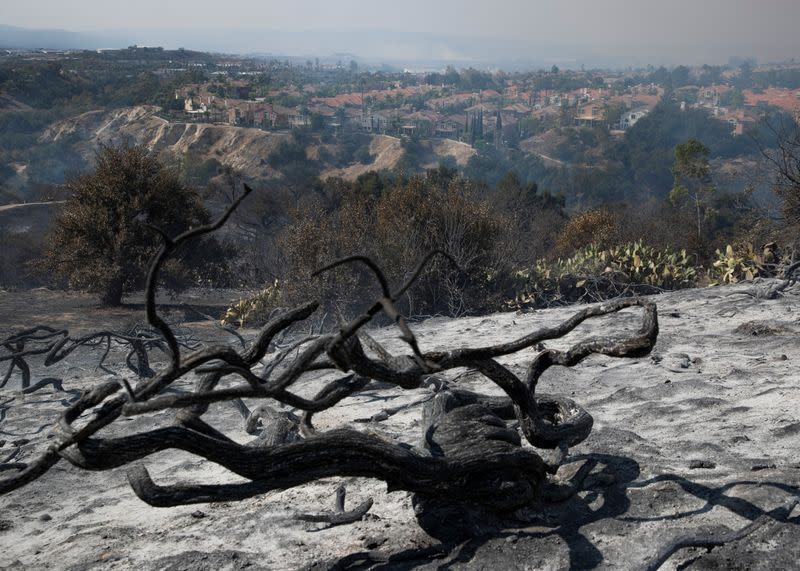 Some of the burn damage is shown from the wind driven Silverado wildfire in Lake Forest, California