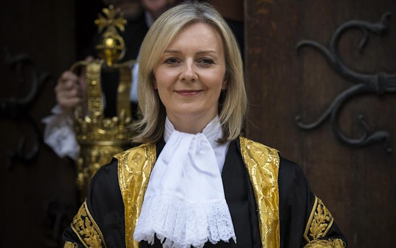Liz Truss in Lord Chancellor robes - Credit: Getty