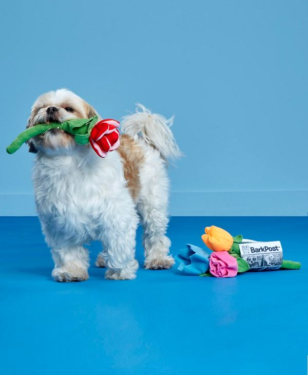 """<h3>Bouquet Of Chew-Toy Flowers</h3><p>Sometimes a bouquet of flowers <s>says</s> barks it best.</p><br><br><strong>BARK</strong> Bouquet Of Flowers Dog Toy, $11.99, available at <a href=""""https://www.urbanoutfitters.com/shop/bark-bouquet-of-flowers-dog-toy"""" rel=""""nofollow noopener"""" target=""""_blank"""" data-ylk=""""slk:Urban Outfitters"""" class=""""link rapid-noclick-resp"""">Urban Outfitters</a>"""