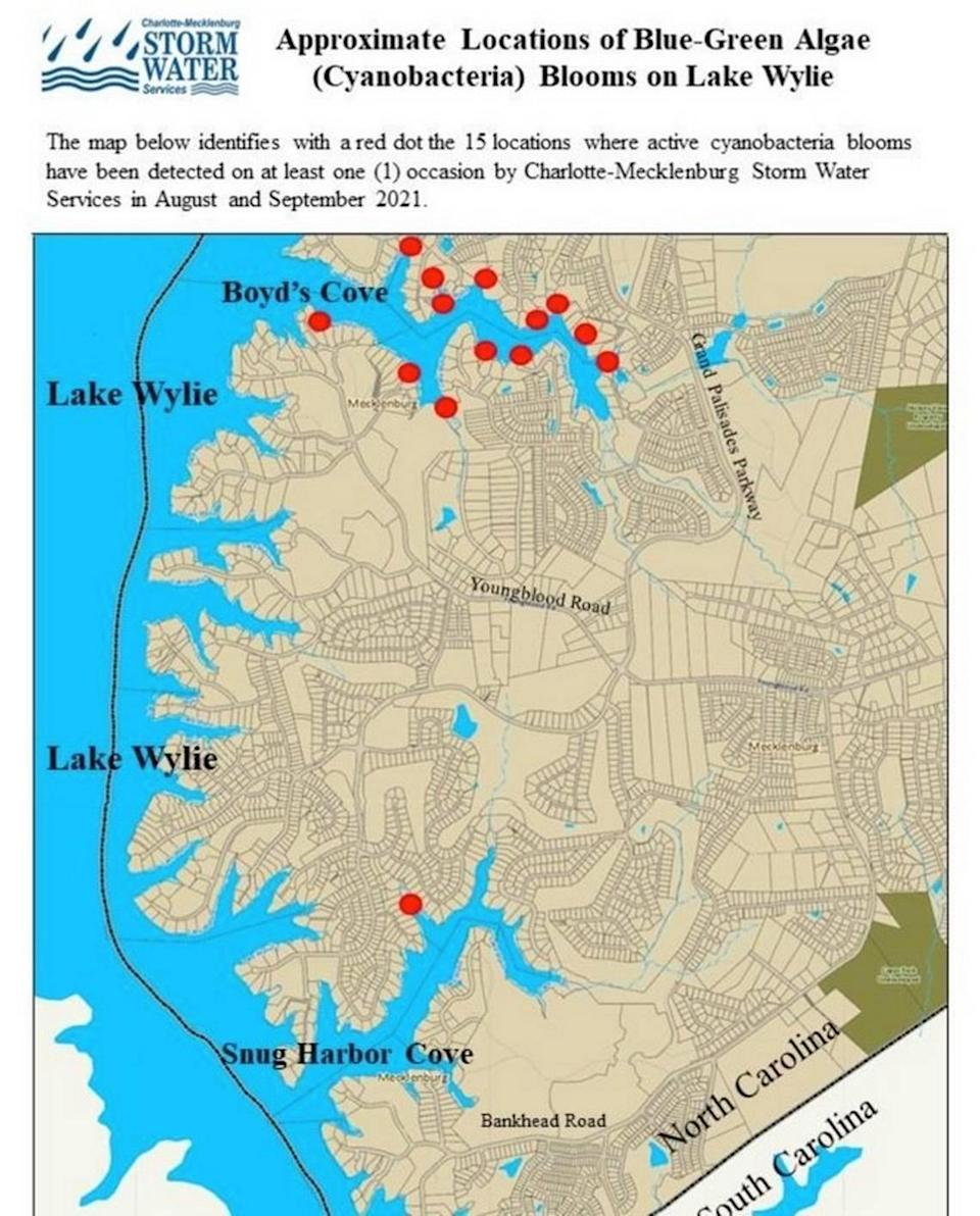 This map shows where blue-green algae blooms were spotted on Lake Wylie on Monday, Sept. 13, 2021.