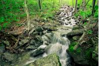 """<p>This Vermont <a href=""""https://www.tripadvisor.com/Attraction_Review-g57415-d105551-Reviews-Smugglers_Notch_State_Park-Stowe_Vermont.html"""" rel=""""nofollow noopener"""" target=""""_blank"""" data-ylk=""""slk:state park"""" class=""""link rapid-noclick-resp"""">state park</a> has a pretty cool name and equally cool trails. In the early 19th-century, it was quite literally a route for smuggling! Nowadays, hikers simply enjoy the scenic trails that look out over soaring cliffs.</p><p><br><a class=""""link rapid-noclick-resp"""" href=""""https://go.redirectingat.com?id=74968X1596630&url=https%3A%2F%2Fwww.tripadvisor.com%2FAttraction_Review-g57415-d105551-Reviews-Smugglers_Notch_State_Park-Stowe_Vermont.html&sref=https%3A%2F%2Fwww.countryliving.com%2Flife%2Ftravel%2Fg24487731%2Fbest-hikes-in-the-us%2F"""" rel=""""nofollow noopener"""" target=""""_blank"""" data-ylk=""""slk:PLAN YOUR HIKE"""">PLAN YOUR HIKE</a></p>"""