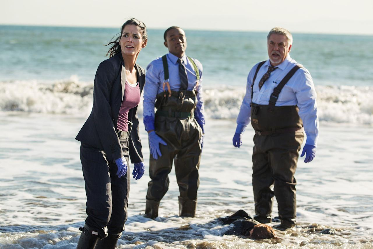 "Angie Harmon, Lee Thompson Young, and Bruce McGill in the ""Rizzoli & Isles"" episode, ""In Over your Head."""