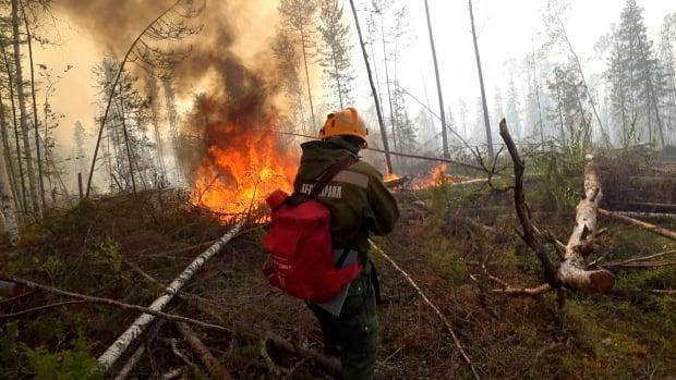 A specialist sprays water while extinguishing a forest fire in the Krasnoyarsk region of Siberia, Russia in August 2020. Zombie fires — fires that smoulder underground through the winter and rise from the earth in the spring — were blamed for some of the extreme fires in Russia last year. (Russia's Aerial Forest Protection Service/REUTERS - image credit)