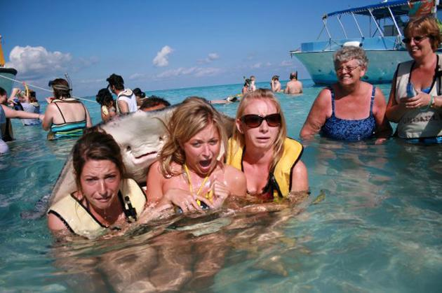 In September, a Reddit user posted a photo of a giant stingray photobombing three horrified women. The image, which was undated and uncredited, quickly went viral. Stingrays on backs: Funny until it happens to you. (Reddit)