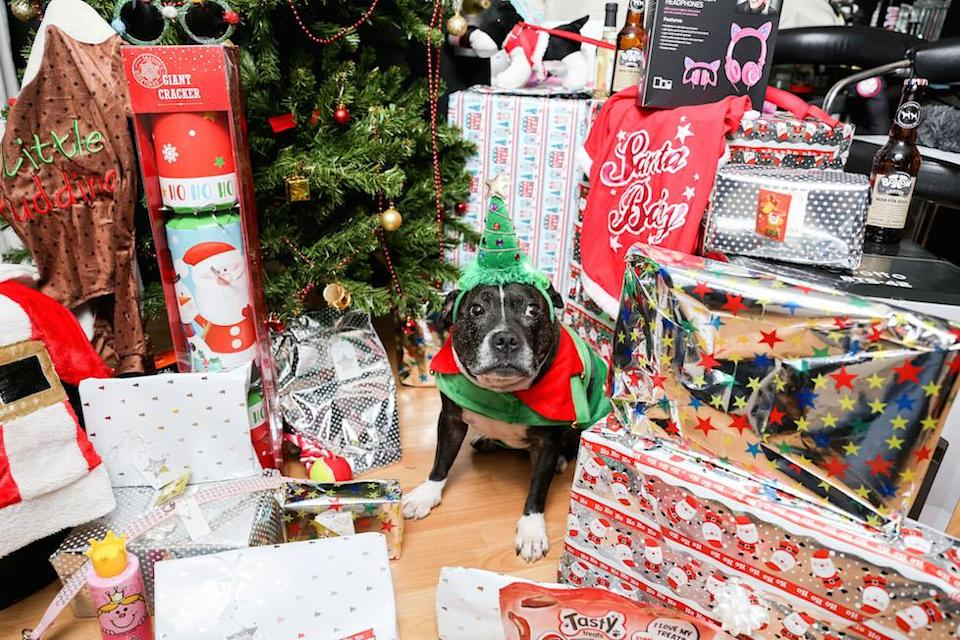 Cleo will be opening 21 different presents this Christmas Day (Picture: Caters)