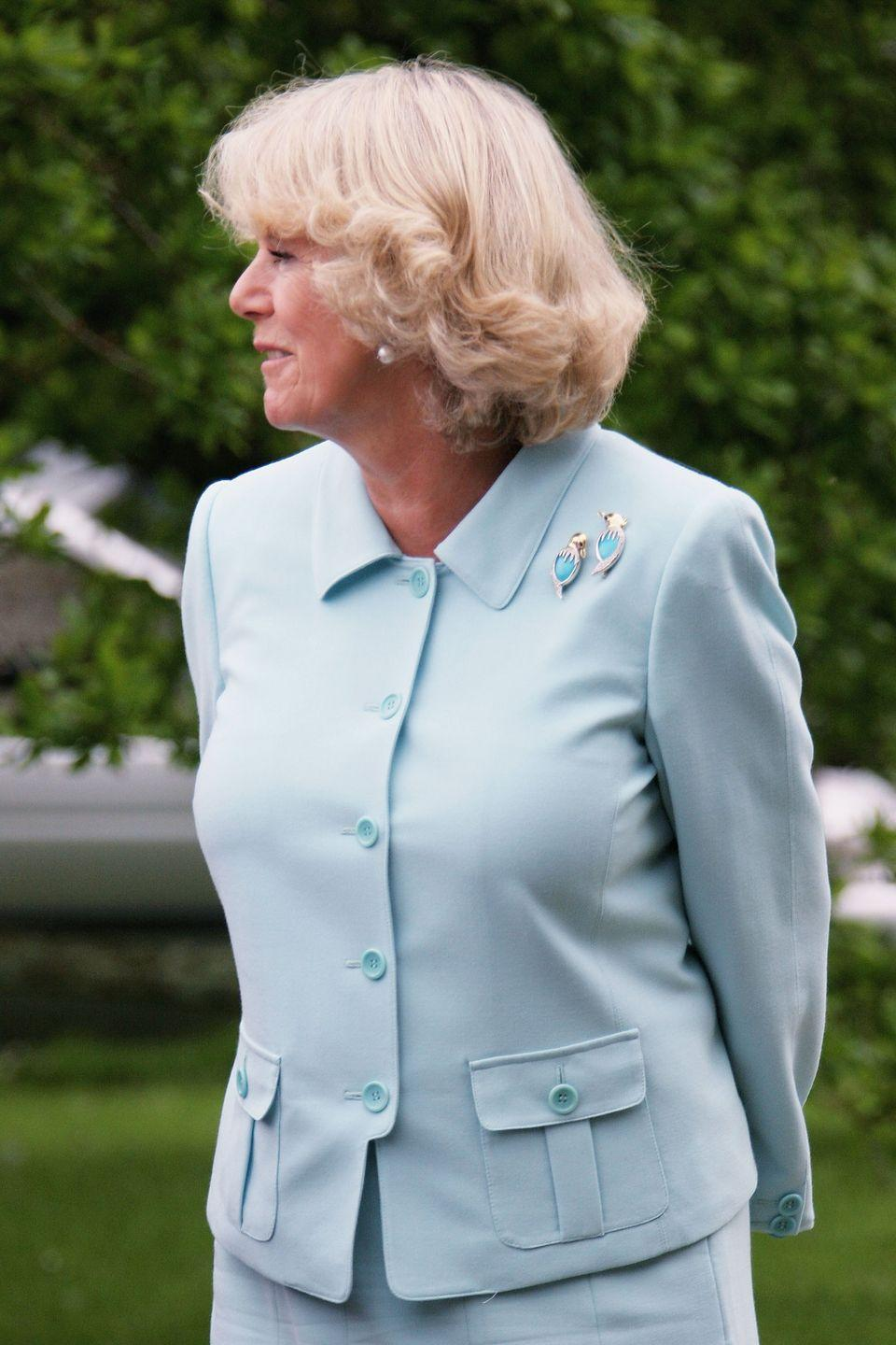<p>The Duchess of Cornwall wore a pair of whimsical turquoise duck pins to visit the Ditchling Museum of East Sussex in 2006. Camilla, who has a collection of brooches to rival the queen's, has often played around with the configuration of these brooches, sometimes wearing just one, and other times placing one on each end of her collar.<br></p>