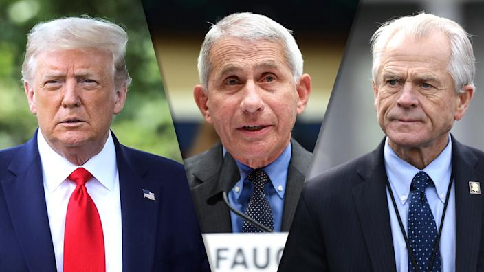 President Trump, Dr. Anthony Fauci and Peter Navarro