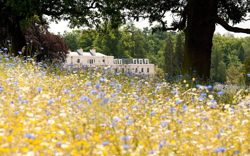 Late spring brings a special reason for visiting the spoiling contemporary country house hotel that is Coworth Park