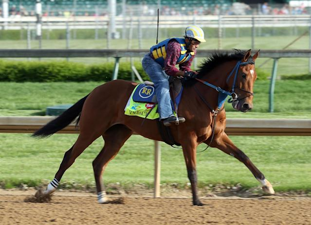 LOUISVILLE, KY - MAY 02: Vyjack runs on the track during the morning training for the 2013 Kentucky Derby at Churchill Downs on May 2, 2013 in Louisville, Kentucky. (Photo by Andy Lyons/Getty Images)