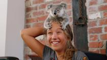 """<p>Seasons one and two of this series about a young koala caretaker are streaming now.</p> <div class=""""related-stories clearfix""""> <div class=""""related-header"""">Related:</div> <a href=""""https://www.popsugar.com/family/why-kids-should-watch-izzy-bee-koala-world-on-netflix-47813559"""" class=""""link rapid-noclick-resp"""" rel=""""nofollow noopener"""" target=""""_blank"""" data-ylk=""""slk:Netflix&apos;s Izzy Bee&apos;s Koala World Follows an 11-Year-Old Koala Rescuer, and We&apos;re Hooked""""> <div class=""""related-poster"""">  </div> Netflix&apos;s Izzy Bee&apos;s Koala World Follows an 11-Year-Old Koala Rescuer, and We&apos;re Hooked </a> </div>"""