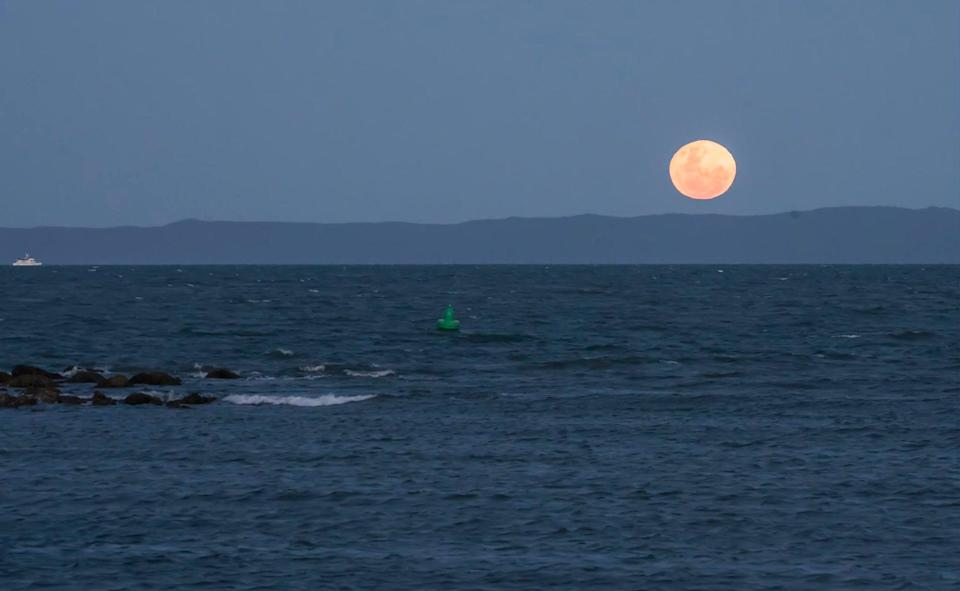 The whole of the moon: Summer's full moons hang just above the horizon (Sheba_Also)