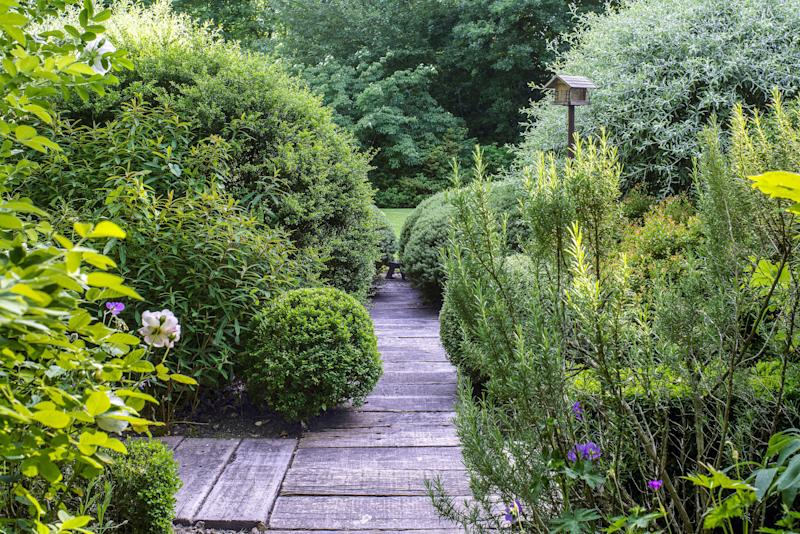 Boardwalks crisscross the property.