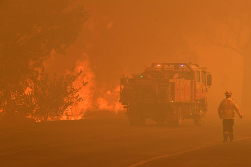 A fire truck passes a tree on fire in Buxton, NSW.