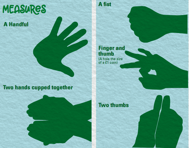 The new guidance uses hands and spoons to help people better measure their portion sizes [Photo: BNF]