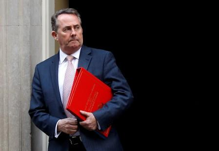 Britain's Secretary of State for International Trade Liam Fox is seen outside Downing Street in London