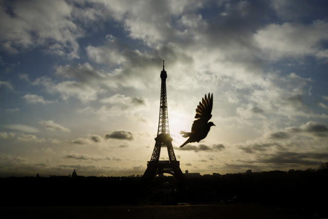 <p>A bird flies in front of the Eiffel Tower, which was closed on the first of three days of national mourning, Nov. 15, 2015. (Photo: Daniel Ochoa de Olza/AP) </p>