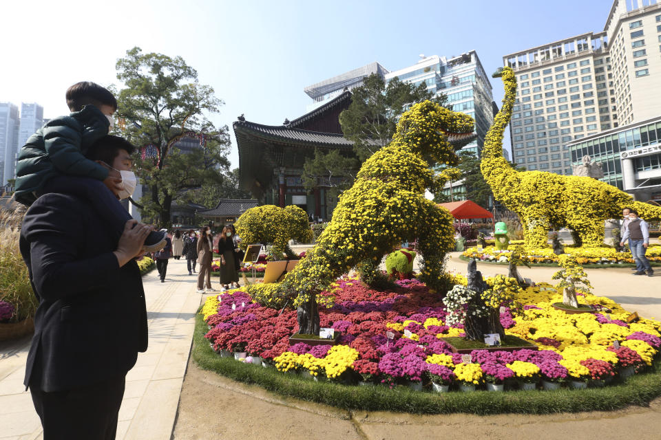 A boy and his father wearing face masks to help curb the spread of the coronavirus watch dinosaurs made of chrysanthemum flowers during the Chrysanthemum festival at the Chogyesa temple in Seoul, South Korea, Monday, Oct. 19, 2020. South Korea on Monday began testing tens of thousands of employees of hospitals and nursing homes to prevent COVID-19 outbreaks at live-in facilities. (AP Photo/Ahn Young-joon)
