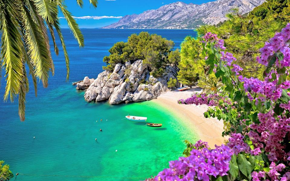 deserted beach in croatia with blue water, two boats, mountains in the background and purple flowers