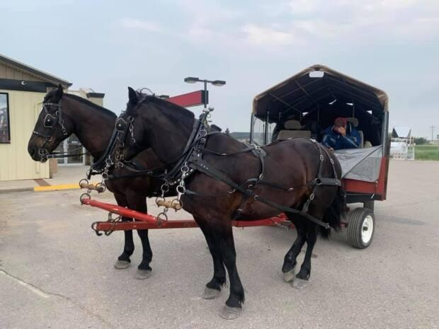 The cousins' horses and wagon stopped in Stoughton, Sask. (Submitted by Pat Hume - image credit)