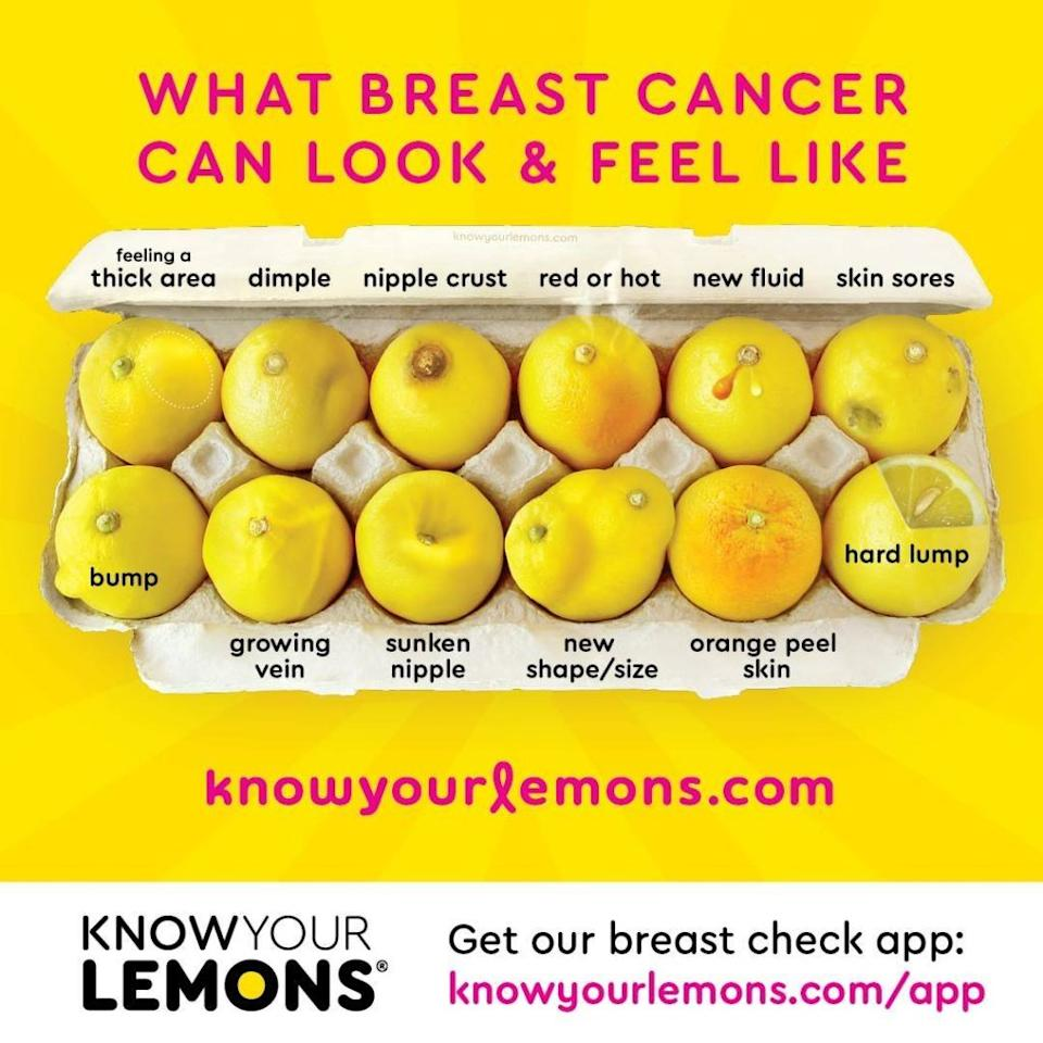 Credit: Know Your Lemons