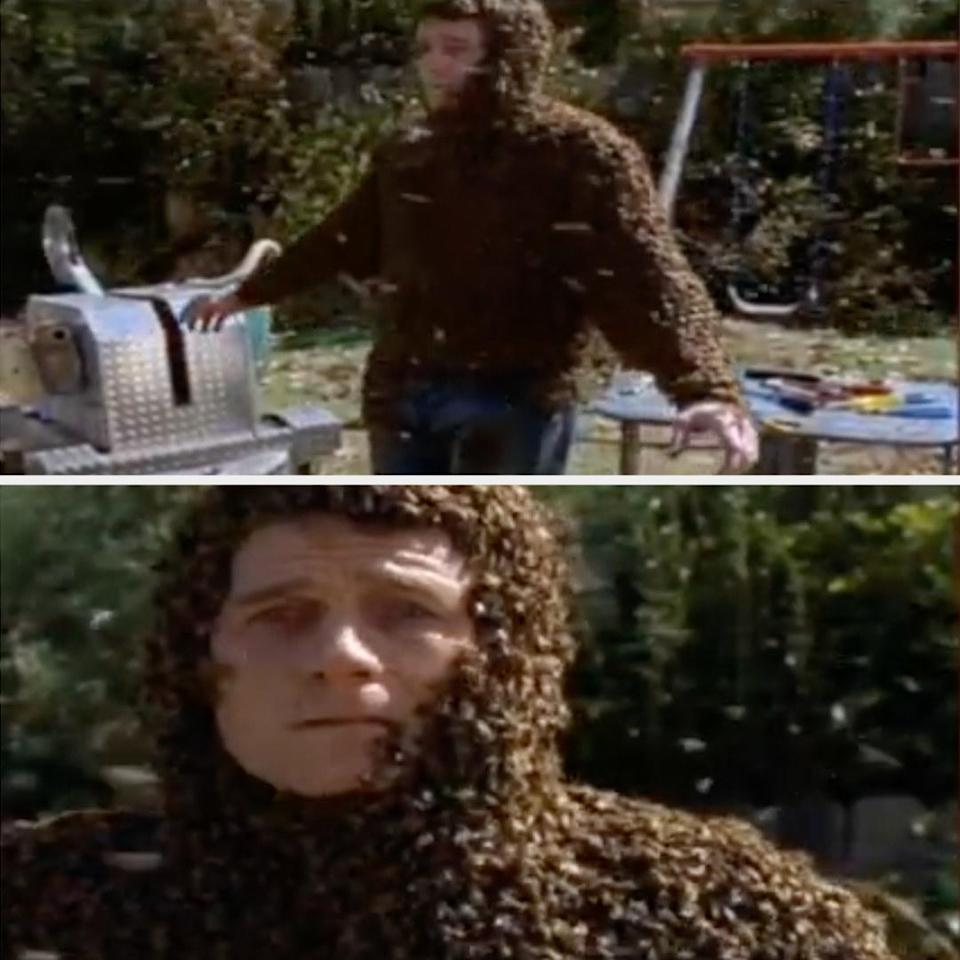Hal looks terrified (and covered in bees)