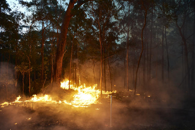 A bushfire is pictured along Putty Road on November 15, 2019 in Colo Heights, Australia. The warning has been issued for a 80,000-hectare blaze at Gospers Mountain, which is burning in the direction of Colo Heights. An estimated million hectares of land has been burned by bushfire across Australia following catastrophic fire conditions - the highest possible level of bushfire danger - in the past week. A state of emergency was declared by NSW Premier Gladys Berejiklian on Monday 11 November and is still in effect, giving emergency powers to Rural Fire Service Commissioner Shane Fitzsimmons and prohibiting fires across the state. Four people have died following the bushfires in NSW this week. (Photo by Brett Hemmings/Getty Images)