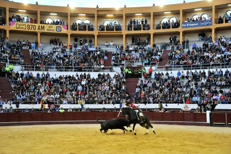 Spain's Pablo Hermoso de Mendoza performs during a bullfight at the Santamaria arena in downtown Bogota in 2017 -- the city council has moved to ban mistreatment of the animals, with the hopes of eventually ending the bloodsport altogether