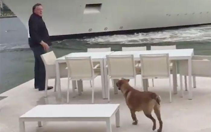 Mr Todhunter turns around in disbelief as the giant cruise liner tries to stop. Picture: WPLG