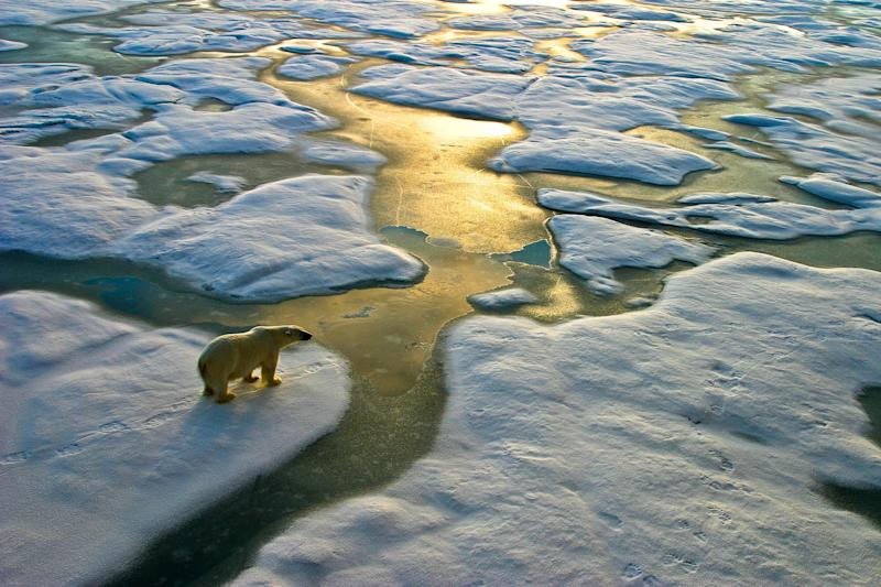 'Warming asymmetry has potentially significant implications for the natural world,' researcher warns (Getty Images)