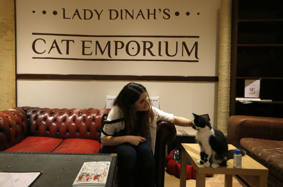"A visitor strokes a cat in the newly opened Lady Dinah's Cat Emporium in London, Friday, April 4, 2014.Feline company is exactly what one of London's newest cafes is offering _ and stressed-out city-dwellers are lapping it up. ""People do want to have pets and in tiny flats, you can't,"" said cafe owner Lauren Pears, who opened Lady Dinah's Cat Emporium last month in an area east of the city's financial district. (AP Photo/Sang Tan)"