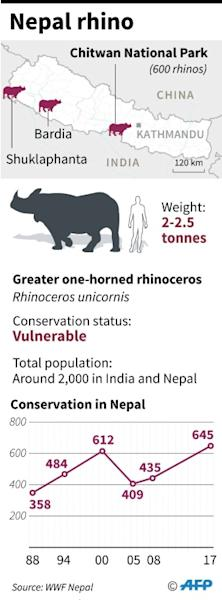 Just 2,000 one-horned rhinos remain in India and Nepal