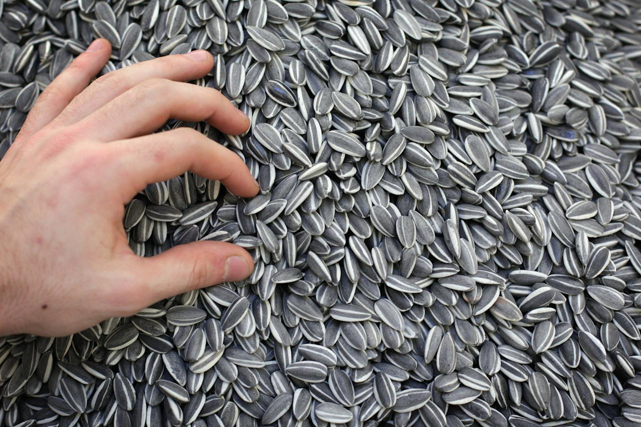 LONDON, ENGLAND - JANUARY 28:  A piece of work entitled Sunflower Seeds, by Ai Weiwei is displayed at Sotheby's Auction House on January 28, 2011 in London, England. The piece makes up part of Sotheby's major sale of Impressionist and Modern Art, and Contemporary Art, and is estimated at approximately 80,000-120,000 GBP, when it goes on sale on February 1, 2011 at Sotheby's Auction House in London.  (Photo by Dan Kitwood/Getty Images)