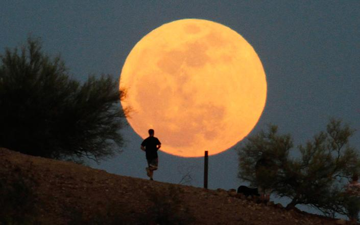 """A runner makes his way along a trail on a butte in front of the """"supermoon"""" at Papago Park in Phoenix, Arizona May 5, 2012. A """"supermoon"""" will light up Saturday's night sky, May 5, in a once-a-year cosmic show, overshadowing a meteor shower from remnants of Halley's Comet, the U.S. space agency NASA said. The Moon will seem especially big and bright since it will reach its closest spot to Earth at the same time it is in its full phase, NASA said."""
