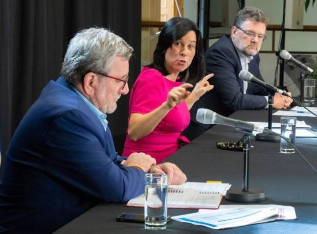 Régis Labeaume, left,  Valérie Plante and Maxime Pedneaud-Jobin, right are among the five Quebec mayors who issued a call to federal party leaders to do more in terms of gun control.  (Ryan Remiorz/The Canadian Press - image credit)