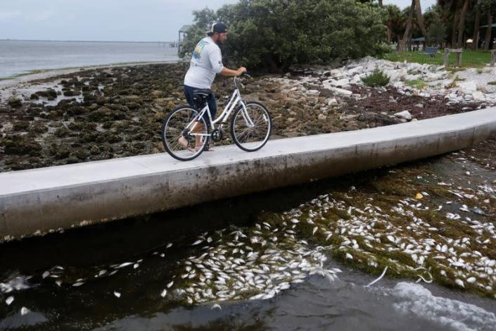 Scenes at Bay Vista Park as Elsa strengthened into a Category 1 hurricane, hours before an expected landfall on Florida's northern Gulf Coast, in St. Petersburg