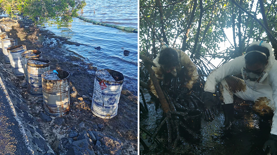 Split screen. Left - barrels full of oil collected from the water nearby. Right - Adrien Charles Duval squats in the oil. He is wearing PPE and a mask.