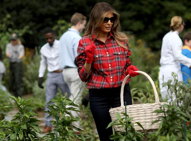 <p>Melania's casual flannel look was perfect for vegetable picking at her event in the White House Kitchen Garden.</p>