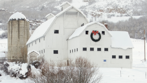 <p>Treat cabin fever by booking a winter break in these high-altitude towns where snow is considered a good thing.</p>