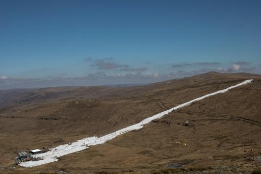 Afriski's main kilometre-long piste is a strip of brilliant white snow between brown grassy ridges