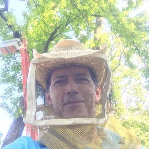 Experienced beekeeper Mickey was called in to help remove the hive. Photo: Facebook