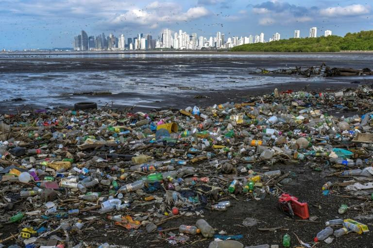 Every year 6.4 million tons of waste end up in the sea, of which between 60% and 80% are plastics (AFP/Luis ACOSTA)