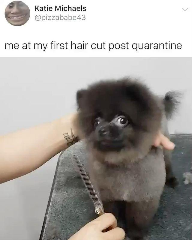 """<p>My hairdresser will be the first person I see.</p><p><a href=""""https://www.instagram.com/p/B_EJaV5jzUd/"""" rel=""""nofollow noopener"""" target=""""_blank"""" data-ylk=""""slk:See the original post on Instagram"""" class=""""link rapid-noclick-resp"""">See the original post on Instagram</a></p>"""