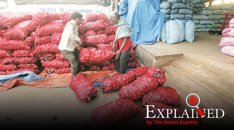 Onion prices, onion prices in India, onion prices in Delhi, onion rates, Express Explained, Indian Express